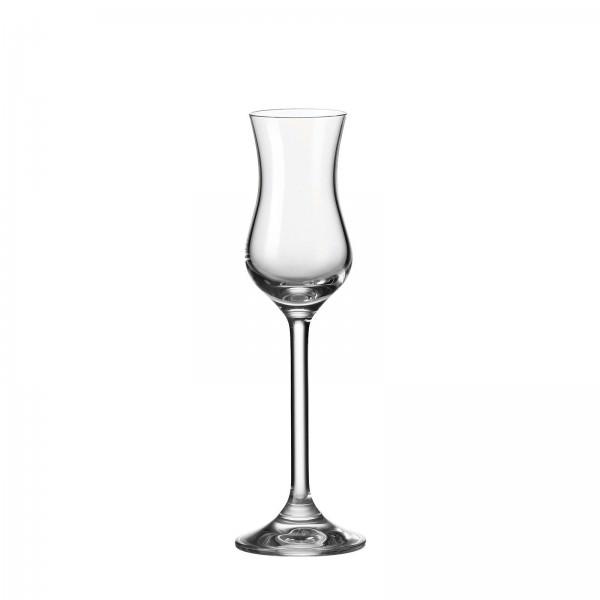 Leonardo 100ml Grappa Glas Daily 063319 Teqton aperitifglas