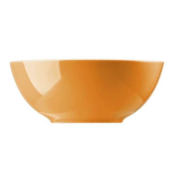 Thomas Müslischale Sunny Day 15cm Müslischüssel Porzellan Orange