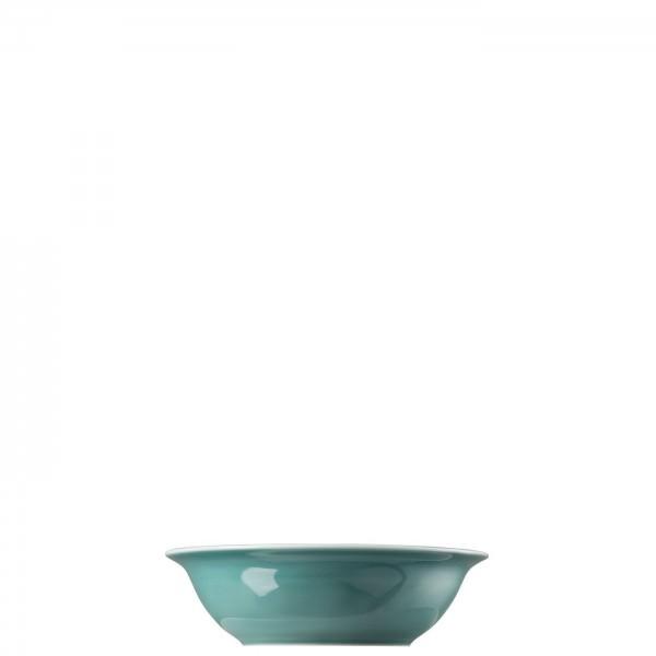 Thomas 500ml Bowl Trend Colour Ice Blue Porzellan